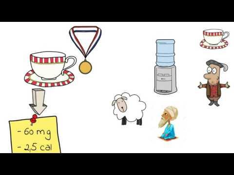 Accettare amminoacidi per combustione di grasso