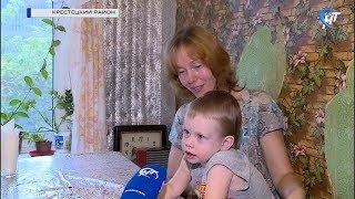 Многодетная семья из Крестецкого района обратилась в облдуму за помощью