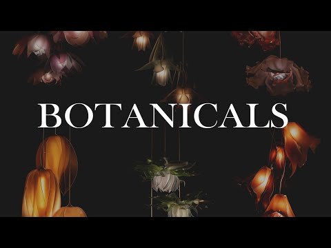 Botanicals: Northwest Flora