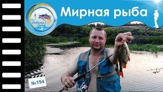 Ловля мирной рыбы спиннингом на отводной поводок