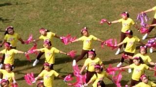 STC Family Day 2011 : Adi's Performance