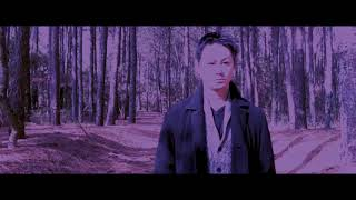 MV「Forest Of Owl」アップしました!