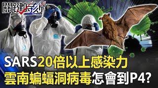 SARS20倍以上感染力!雲南蝙蝠洞跑出來的病毒怎會到武漢P4!? 【關鍵時刻】20200218-5 劉寶傑 陳耀寬 王定宇 康仁俊