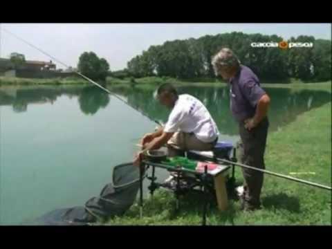 La pesca su una picca in agosto-settembre