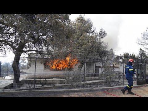 Πυρκαγιά στα Βίλια: Στάχτη πάνω από 80.000 στρέμματα – Κάηκαν σπίτια…