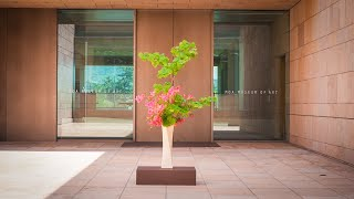祈りの花3 Ikebana For Praying