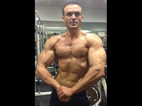 La quantité de muscles chez une grande personne