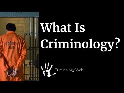 What is Criminology? A Crash Course