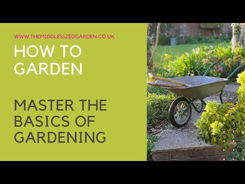 , title : 'How to garden - what every beginner gardener needs to know....'