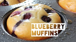 low fat blueberry muffin mix