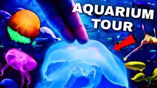 TOUCHING Jellyfish In The World's LARGEST Indoor AQUARIUM! 😱 *INSANE*
