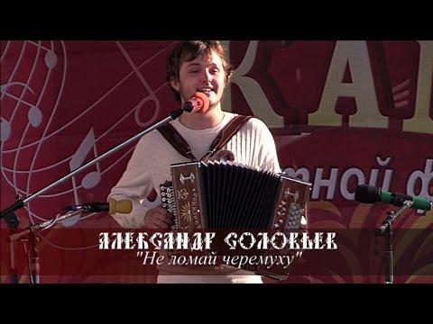 Александр Соловьев - Не ломай черемуху