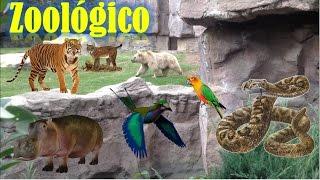 inolvidable recorrido por el Zoológico de Chapultepec ✨ ❀ ❉