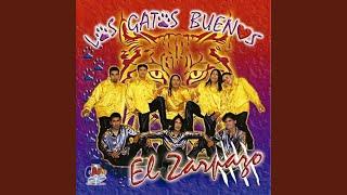 "Video thumbnail of ""Los Gatos Buenos - Duele"""