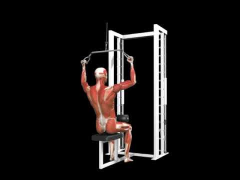 Pro Lat Bar Pulldown (Cable)