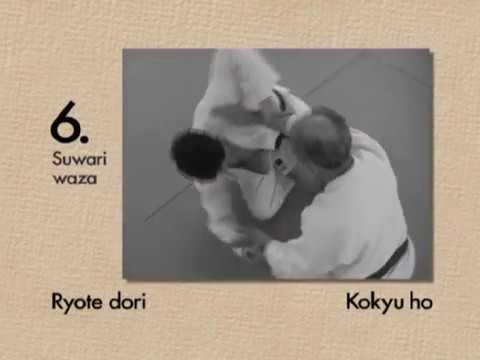 Kyu Prüfungsprogram - 6.Kyu