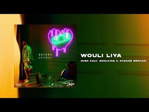 Wouli Liya