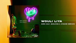 DADJU   Wouli Liya Avec KALY, SOOLKING & AYMANE SERHANI (Audio Officiel)