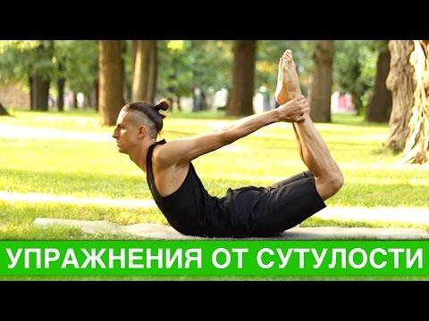Упражнения для взрослых при сколиозе