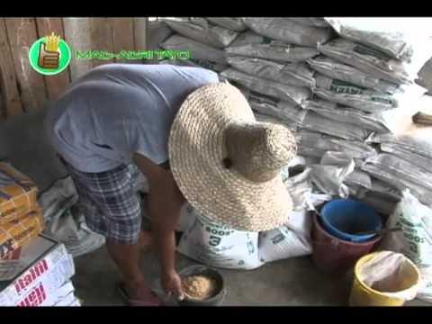 Na pumapatay ng mga taong nabubuhay sa kalinga ng kalamnan