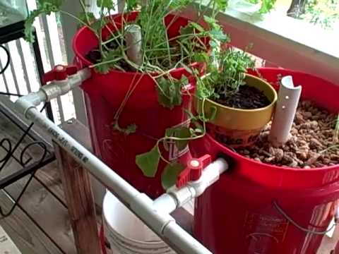 Diy Aquaponics Six Plans For The Backyard Tinkerer