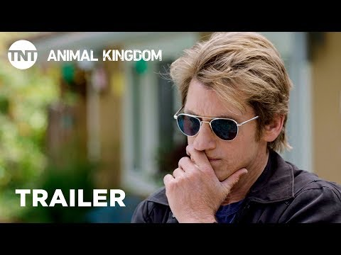 TV Trailer: Animal Kingdom Season 3 (0)