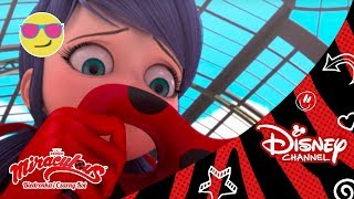 Śpiewaj I Tańcz | Miraculous: Biedronka I Czarny Kot | Oglądaj W Disney Channel!