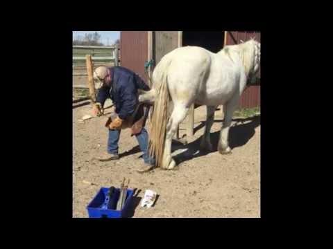 Übungen für die Wirbelsäule in Osteochondrose Stretching