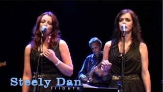 Dirty Works - Steely Dan Tribute