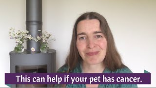 This can help if you dog or cat has a cancer diagnosis.