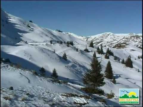 Природните убавини во Шарпланина-Зимски мотиви