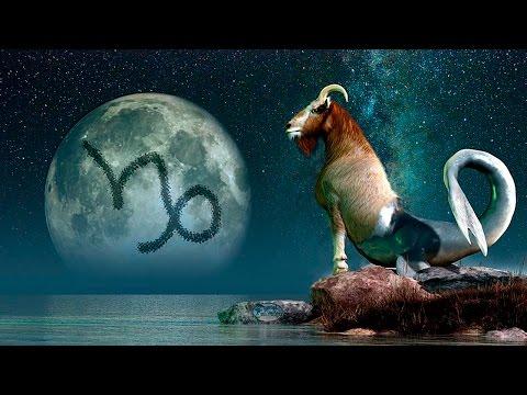Дракон лев гороскоп совместимости