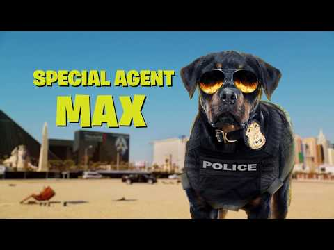 Show Dogs Show Dogs (TV Spot 'Meet Max')