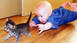 Funny Baby And Cat - Best Friend Forever