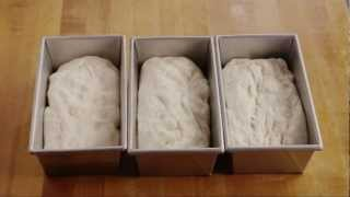 How To Make Homemade White Bread | Bread Recipe | Allrecipes.com