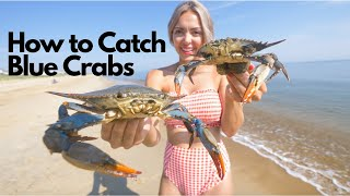 World Famous Blue Crab Catch and Cook - Chesapeake Bay Crab (How To)