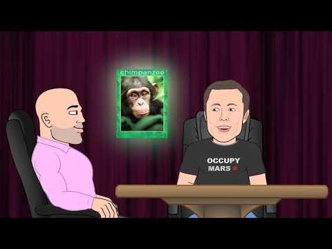 Elon Musk Chimp Moment - JRE Toons