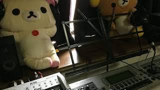 碧いうさぎ酒井法子