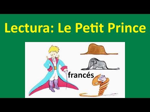 Le Petit Prince: Lectura en francés del Principito