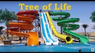 Куда пойти в Актау купаться? Tree of Life - 1 Minute Story NS