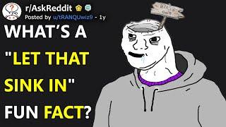"""What's A """"Let That Sink In"""" Fun Fact? (r/AskReddit)"""