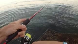 Поо рыбалка в одессе морская