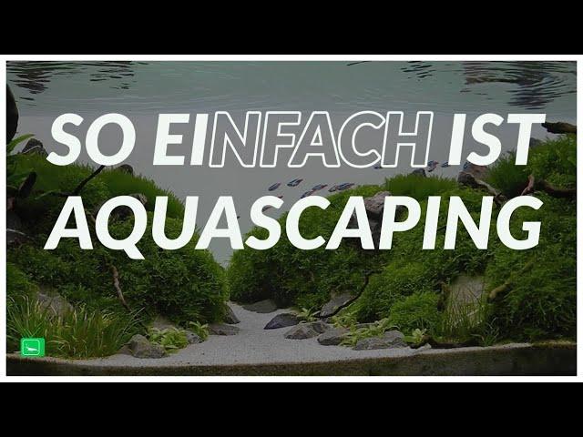 AQUARIUM EINRICHTEN STEP BY STEP | Aquascaping | GarnelenTv