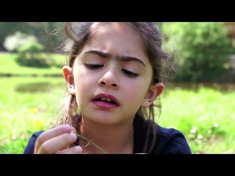 HÉRITAGES Bande Annonce (Documentaire Libanais - 2015)