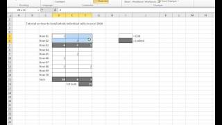 HowTo lock and unlock individual cells in Excel 2010