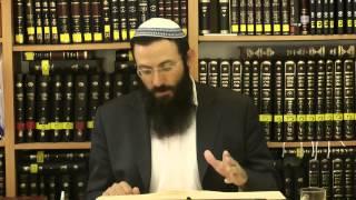 40 הלכות שבת - או''ח סימן שכא' סע' ט-יג -הרב אריאל אלקובי שליט''א