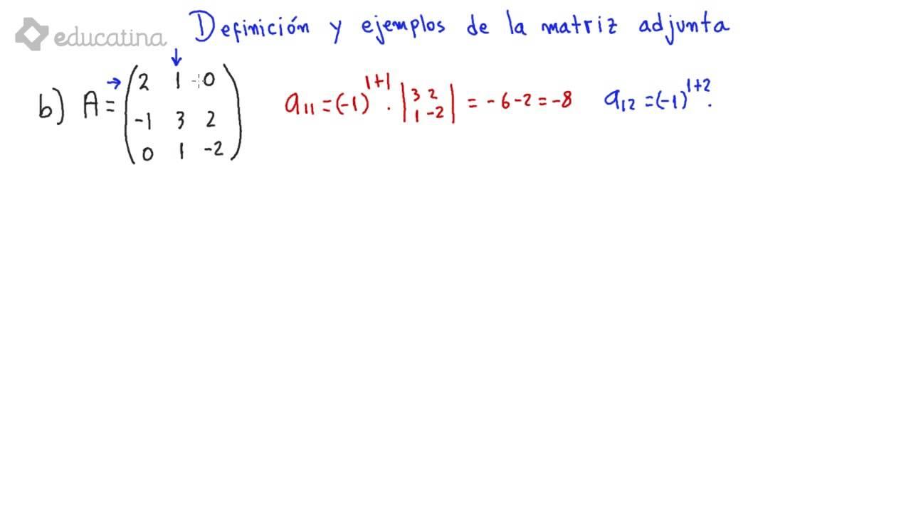 Educatina - Definición y ejemplos de la matriz adjunta