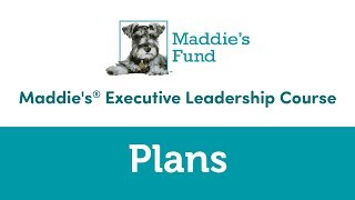 Maddie's Executive Leadership Course: Plans