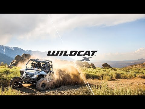 2019 Arctic Cat Wildcat X LTD in Hazelhurst, Wisconsin
