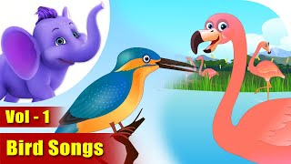 Bird Songs Vol 1| 4K | Appu Series